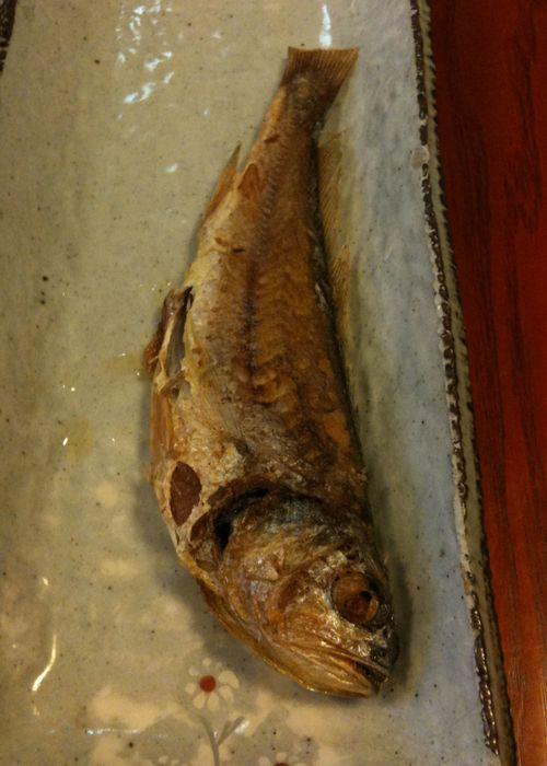Fish delight